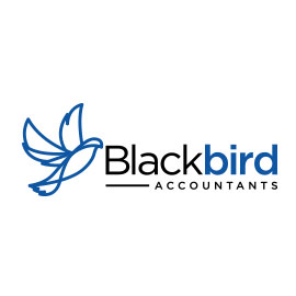 Accounting Logos - Black Bird Accountants