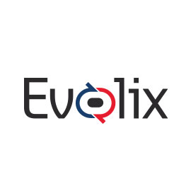 Accounting Logo Ideas - Evolix